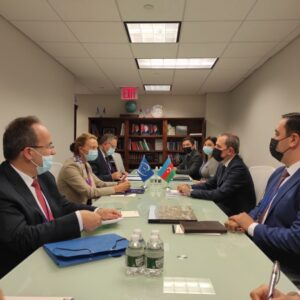 Azerbaijani FM meets with Secretary General of Council of Europe